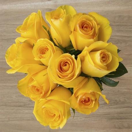 Саженцы розы Керио